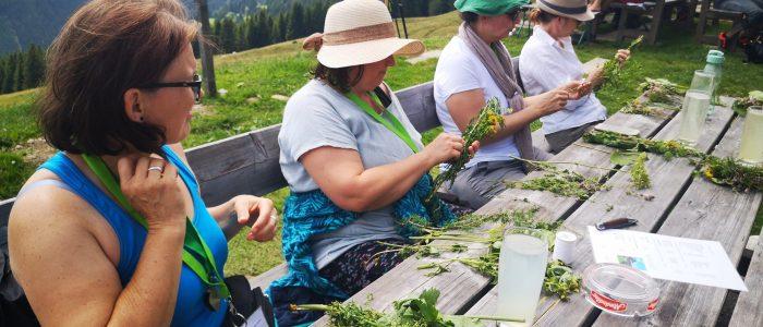 Kräuterkurs mit Kräuterverarbeiung bei Vana Monika